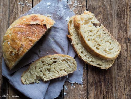 Pane senza impasto o no knead bread - con solo 2 grammi di lievito